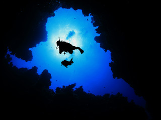 Scuba divers descend into underwater canyon