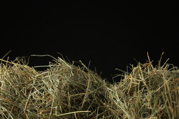 Hay on dark background