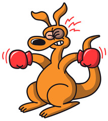 Boxing Kangaroo with a black eye