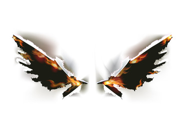 Ripped paper and flame collection, wings
