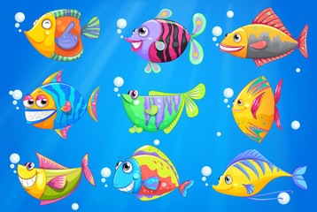 An ocean with nine colorful fishes