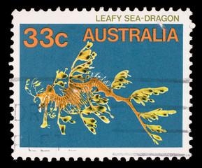 Stamp printed in the Australia shows Leafy Seadragon