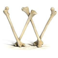 bones font letter W
