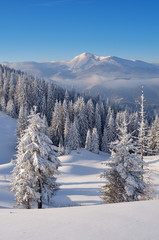 Wall Mural - Winter landscape in mountains