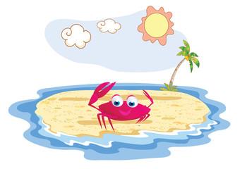 crab funny posing at the beach