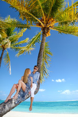 Beautiful young couple sitting on palm tree on a beach