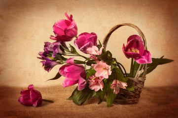 bouquet of tulips in the basket still life