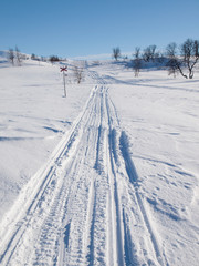 ski and snow scooter tracks in nordic winter landscape