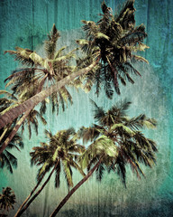 Grunge tropical background with coconut palm tree. Image in vint