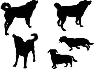 five dogs black silhouettes