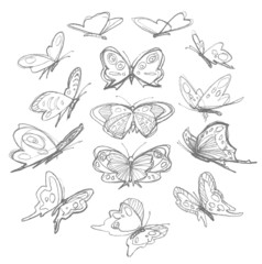 Set of hand drawn butterflies. Vector illustration.