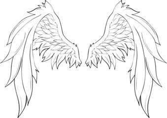 Engelsflügel Lineart