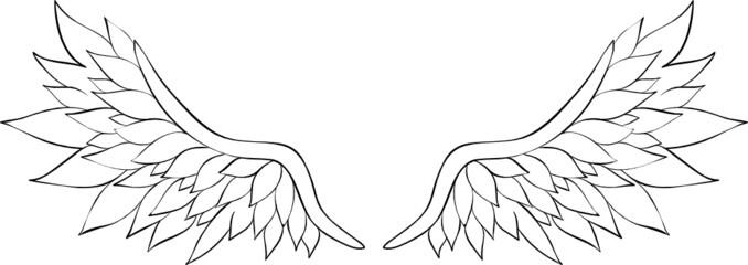 Flügel Ausmalbild