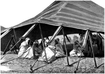 Arabians - Resting in the Desert