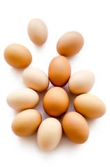 eggs chicken