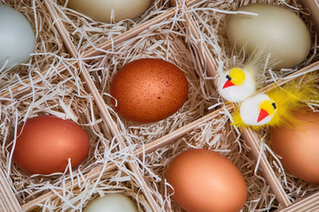 Assortment of eggs with decorative Easter chickens in crate