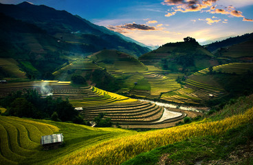 Printed roller blinds Rice fields Rice fields on terraced in sunset at Mu Cang Chai, Vietnam