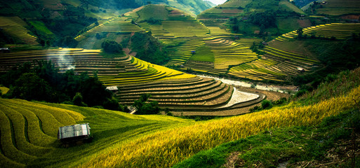 Fotobehang Rijstvelden Rice fields on terraced in sunset at Mu Cang Chai, Vietnam