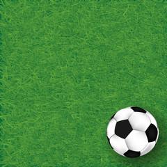 Soccer ball on grass background, illustration