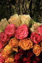 Roses in a floral arrangement
