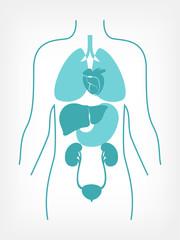 Flat Medical Infographics Elements. Vector.