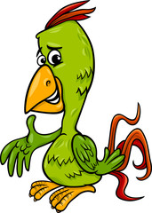 parrot bird cartoon illustration