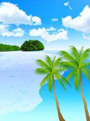 海 砂浜 風景