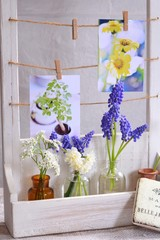 春の花のテーブルフォト