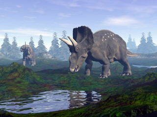 Diceratops dinosaurs in mountain - 3D render