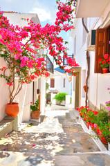 Bougainvillea on the narrow streets of Skopelos, Greece