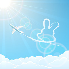 Rabbit and plane in the sky