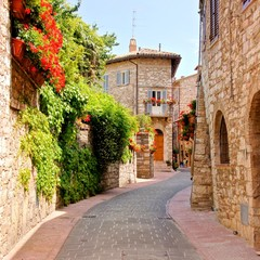 Fotomurales - Flower lined street in the town of Assisi, Italy