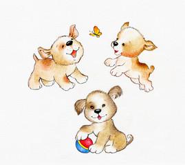 Three cute puppies