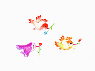 Three birds on white background