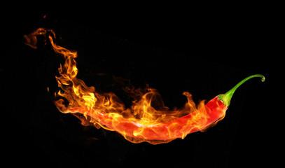 Chili paper in fire
