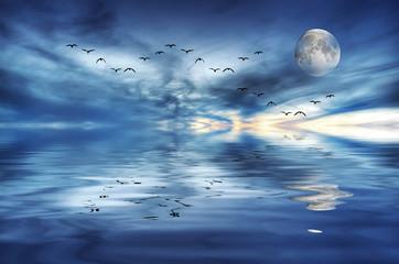 cuando la luna se mira al espejo