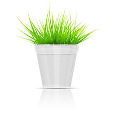 White Flowerpot With Green Grass.