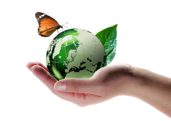 Wall Mural - eco-friendly concept - butterfly on planet in hand