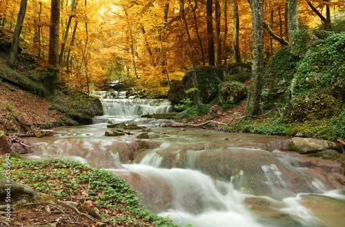 природа река водопад лес деревья nature river waterfall forest trees  № 484062  скачать
