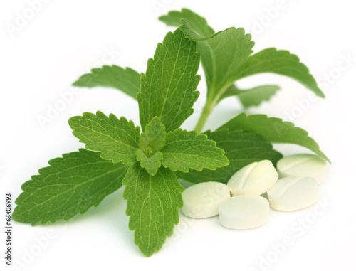 Энтеросорбент Рекицен-РД в таблетках - Эффективная и