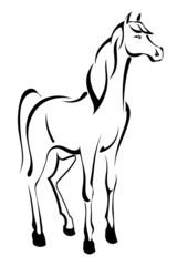 Tattoo standing horse
