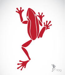 Vector image of a frog