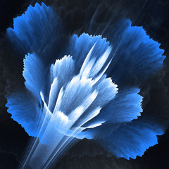 Wall Mural - Abstract flower blossom