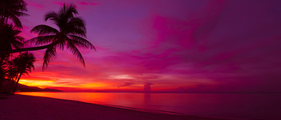 Foto op Plexiglas Strand Tropical sunset with palm tree silhouette panorama