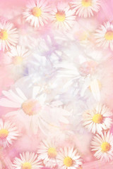 Pretty daisies grungy background