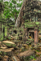 Fototapete - Ancient ruins and tree roots, Ta Prohm temple, Angkor, Cambodia