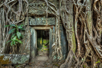 Recess Fitting Ruins Ancient stone door and tree roots, Ta Prohm temple, Angkor, Camb