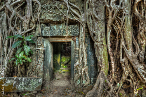 Fototapete Ancient stone door and tree roots, Ta Prohm temple, Angkor, Camb