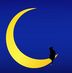 Il Gatto sulla Luna (canzone d'amore)