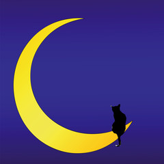 The Cat on the Moon (love song)